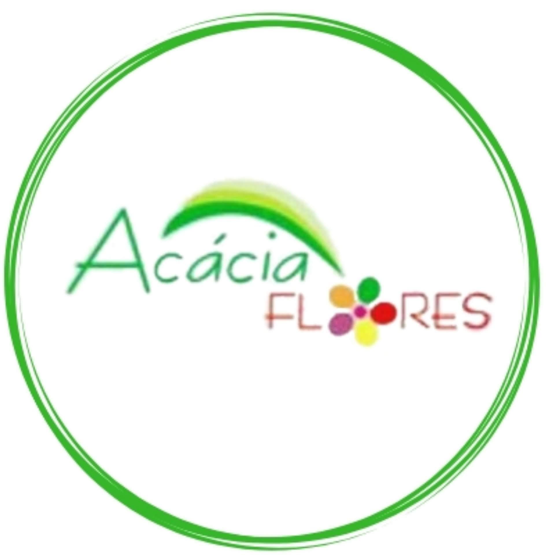 Acácia Floricultura