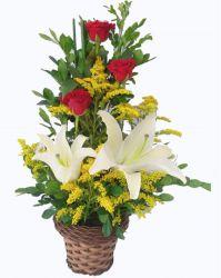 Arranjo com Flores e Lírios
