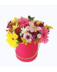 Box de Flores do Campo e Gerberas